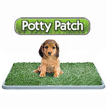 POTTY PATCH