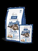 Корм Brit Care Cat Monty Indoor для кошек живущих в квартире с курицей